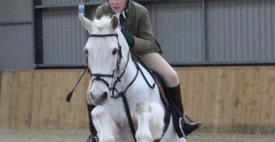 Show Jumping - RESULTS