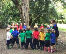 Pre prep forest school 2