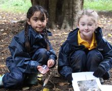 PP Forest school 2